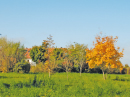 Immobilie Mein Aubing 2 - Umgebungsbild 2